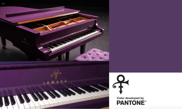 prince + pantone
